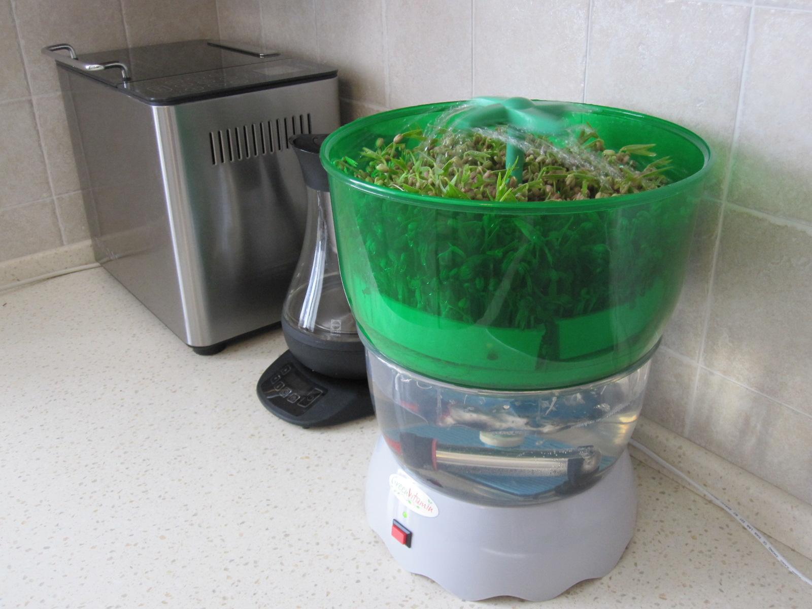 Проростки и сыроедение ? интернет-магазин green vitamin