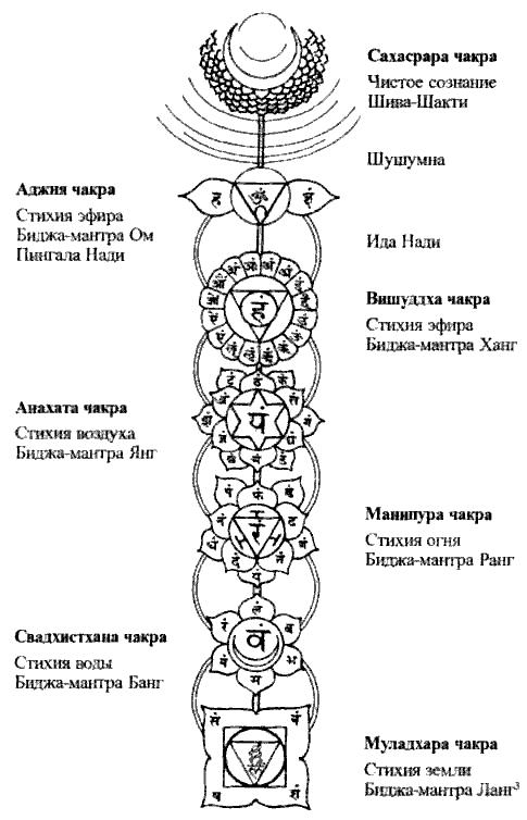 Глава 6 кундалини: спящая космическая энергия внутри человека / пранаяма. сознательный способ дыхания.