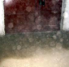 Страничка пани каролинки :: заметки :: к вопросу о шарах праны