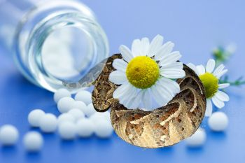 Гомеопатия - угроза, которую не осознаём.