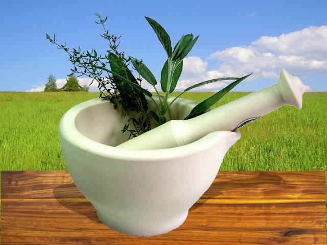 Гомеопатия волгоград