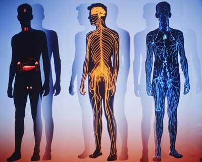 Альтернативная медицина в системе современных знаний